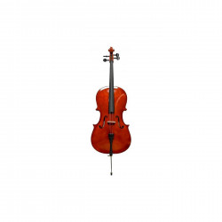 Cello Cervini HC-100 1/2